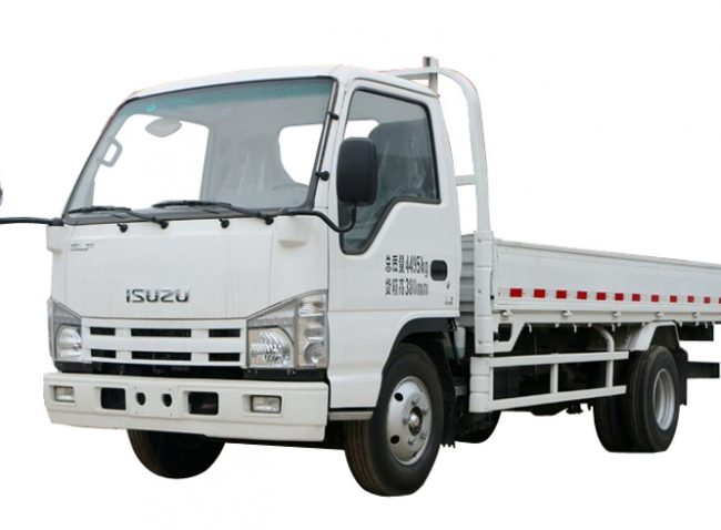 Mini ELF ISUZU With Low Cargo Truck